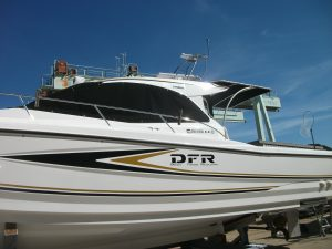 DSCF5979